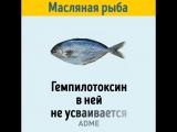 Как правильно выбрать свежую рыбу: