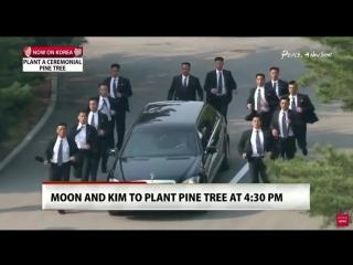 12 охранников бегом сопровождают автомобиль с лидером Северной Кореи, который поехал на обед