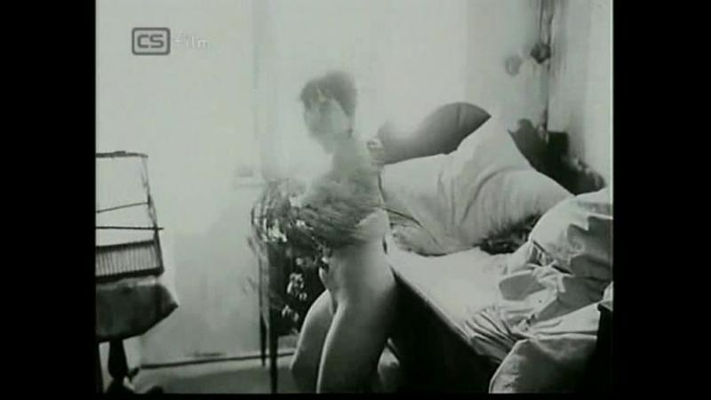 Zuzana Fišárková - Archa bláznů (1970)