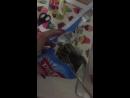 маскарадан шыккан шырын