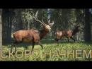 TheHunter: Call of the Wild ► Симулятор охотника на Xbox ONE ► Часть - 04