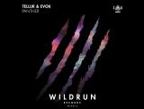 Tellur &amp Evok - Panther