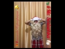 Дед мороз наряжает елку