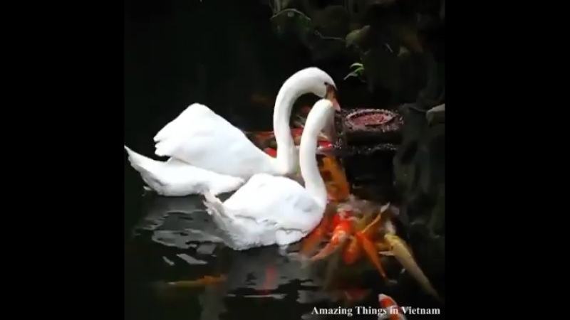 Красота природы 👍🏻😊