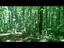 Крым Большой каньон Ай Петри Идём за грибами Грибники Непредсказуемая погода Град 02 08 18