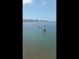 В Геленджике очевидцы сняли на видео, как в море произошел слив канализации. Комментарии автора просто прекрасны - - Вот вам и к