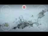 Видео с место крушения самолета в Подмосковье