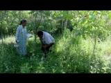 Уйгурская песня - Ата Анимиз