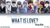 Stray Kids - What Is Love (How would SK sing Twice's WIL) Color Coded Lyrics Han-Rom-Eng