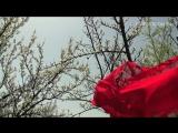 Aliona Moon - O Mie (Moldova) 2013г. Aliona Moon - O Mie (Moldova) 2013г. Eurovision Song