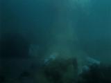 Chernyi.okean.1997.DivX.DVDRip