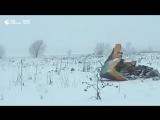 Крушение пассажирского самолета в Подмосковье