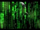 Атакуем и хакаем браузер с помощью BeEF Kali Linux