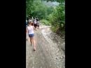 по тропинке в лес
