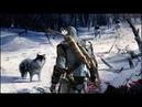 Assassin's Creed 3 - СКАЗКА ОЖИЛА! / КУДА ПОШЕЛ КОННОР? / МАЛЬЧИК КОТОРЫЙ КРИЧАЛ ВОЛКИ!