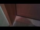 откосы из МДФ панелей на входную дверь