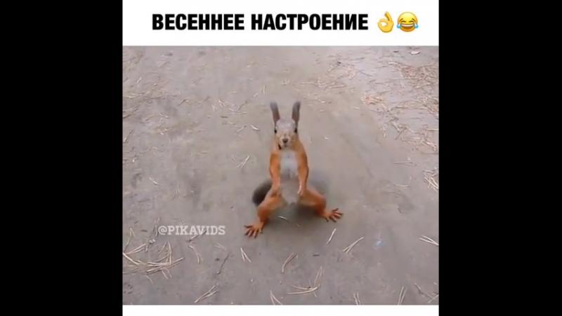 хаха!😊😂🤣