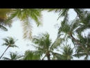 Alice Deejay - Better Off Alone (Tommer Mizrahi Remix)