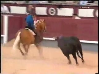 Мерлин-самый удивительный конь в мире..