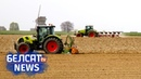 На Мёршчыне фермеры змагаюцца з уладамі за зямлю I Фермеры борются с властями за землю Белсат