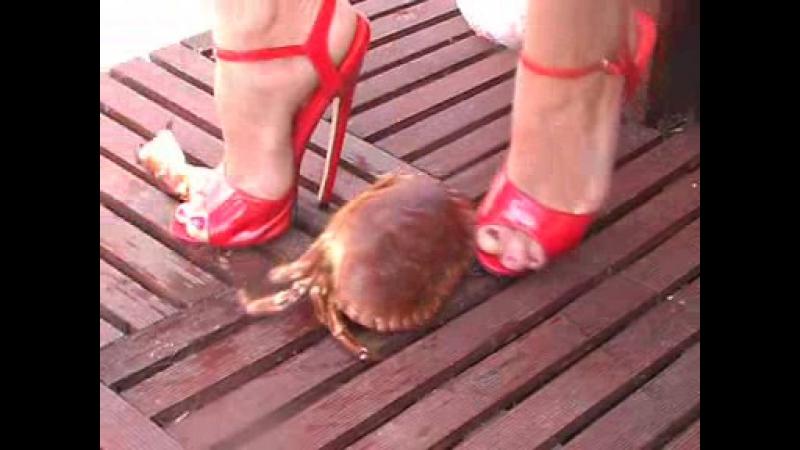 Pretty red heels crab crush