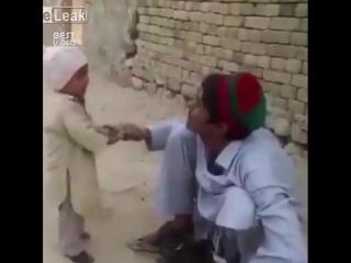 Мелкий встал на защиту пернатого друга
