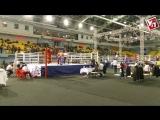 В Ульяновске стартовал чемпионат России по кикбоксингу