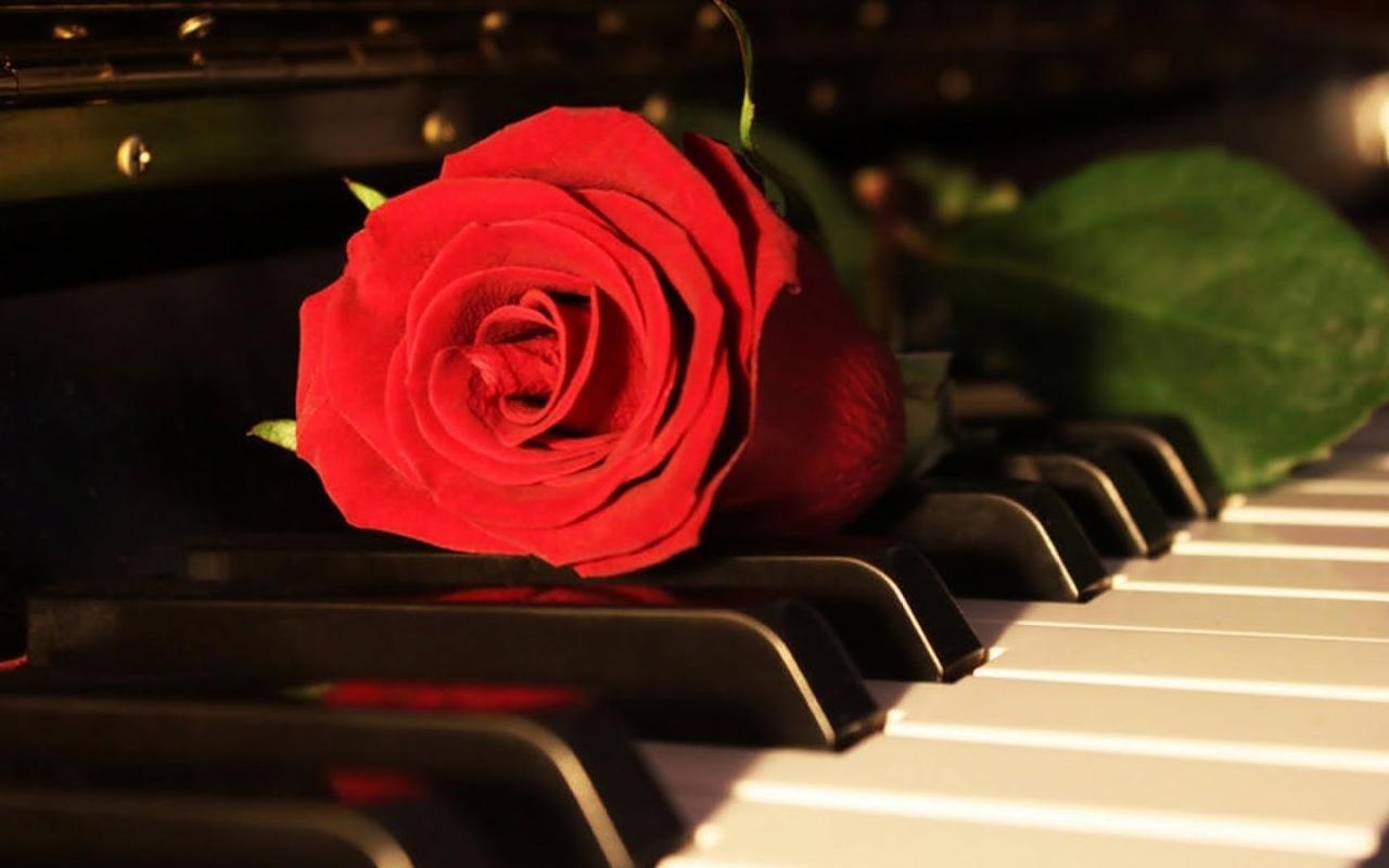 Музыкальные романтические музыкальные открытки