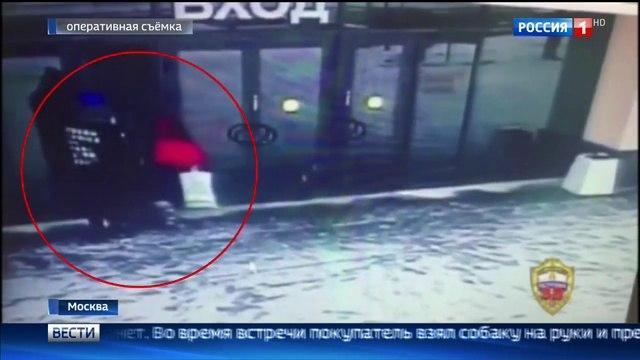 Вести-Москва • Похититель щенка йорка пошел на грабеж ради любви