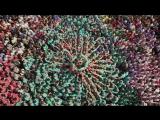 Человек _ Human. Genesis of the film (2015) Янн Артюс-Бертран [Full HD 1080]