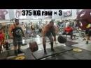 Пейман Махерипор (Иран), становая тяга без экипировки - 375 кг на 3 раза 💪