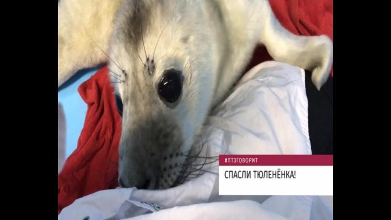 Новости одной строкой 01.03.2018