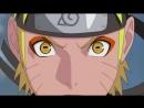 Naruto Hero