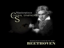 Symphony No. 9 in D minor ('Choral') Op. 125 - Molto vivace