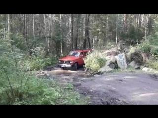 Там в дремучем лесу