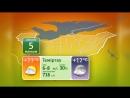 5 канал Караганда - прогноз погоды на 05.06.2018 (каз.)