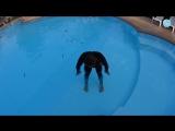 Плавание Баттерфляем_ как отточить технику гребка и при этом сохранить силы и мотивацию к обучению!! ( 1080 X 1920 ).mp4