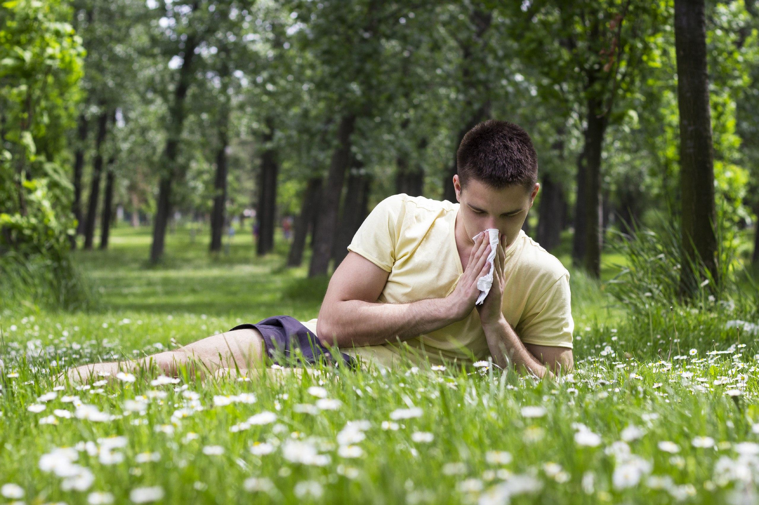 Что такое аллергия на пыльцу?