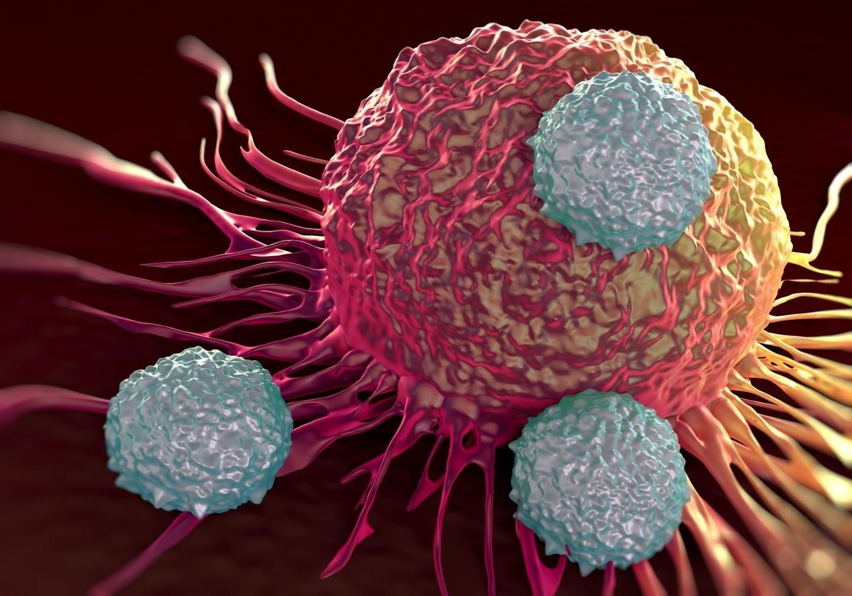 Новый метод позволит остановить распространение клеток четырех типов рака