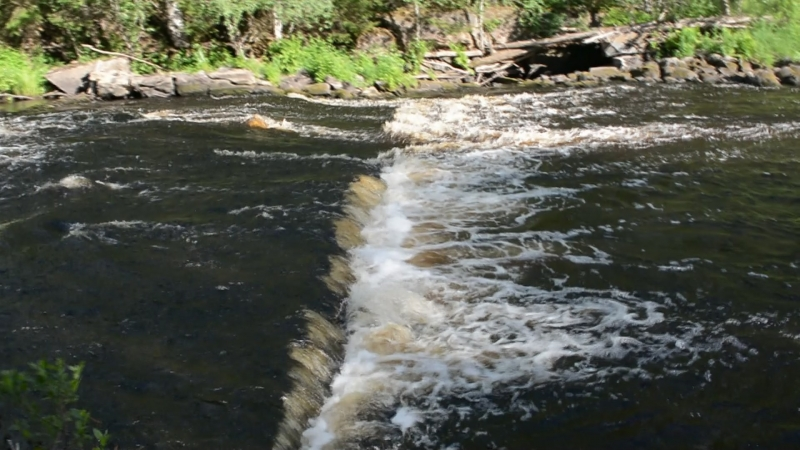 Лесная река у нашей фазенды (Сортавальский р-он , пос. Рюттю . река Тохмайоки )