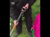 №5 Мужчина решил снять ролик про садовые инструменты. Но в процесс съемки вмешалась внучка...