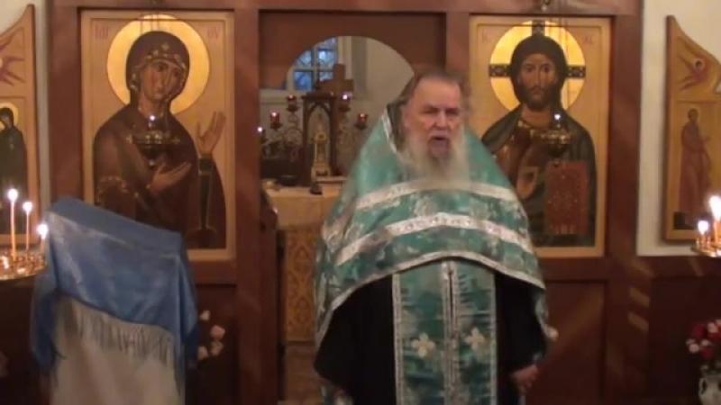Священник Павел Адельгейм Проповедь на вечерне в храме свв Жён мироносиц Псков 16 10 2012