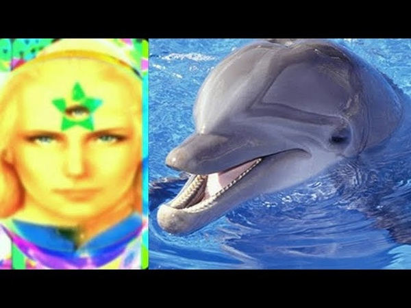 Ashtar - Dolphins And Humans Working Together To Save Earth