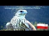 Hej sokoly - polska werzija - YouTube