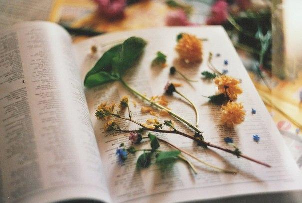 Ты больше не знаешь, почему ты учишься Ты учишься, потому что хочешь получать хорошие оценки, ты учишься, потому что хочешь показать, на что способна, ты учишься, потому что хочешь поступить в