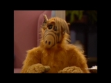 Alf Quote Season 3 Episode 19_Суеверие