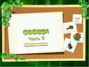 Развивающие уроки по методике Домана для детей от 6 месяцев - Овощи часть 3