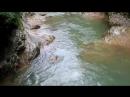 Река Курджипс Адыгея июль