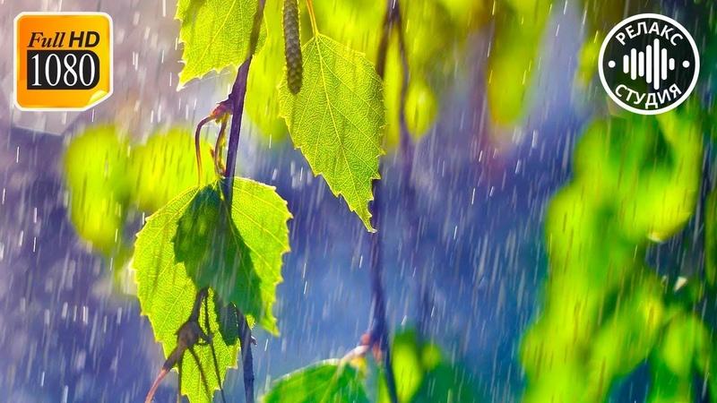 Расслабляющий Дождь, Гром, Гроза Усыпляющие Звуки Природы Шум Летнего Дождя