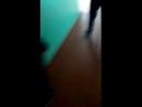 Аврора Капустина - Live